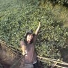 Foto Kebun Teh Nglinggo,