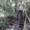Foto hutan lindung namang,