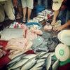 Foto Pasar Pinasungkulan - Karombasan, Manado