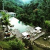 Foto Jungle Fish, Ubud