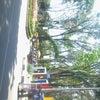 Foto Alun-Alun Kota Bojonegoro, Bojonegoro