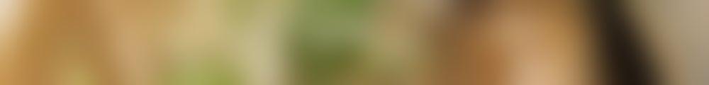 Large background photo of 和歌山風とんこつラーメン ザ・サムライ