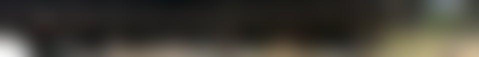 Large background photo of Petaluma Adobe