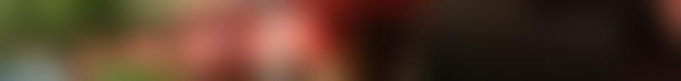 Large background photo of Baan Boran
