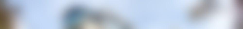 Large background photo of Медси