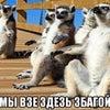 Фото КБ РостФинанс