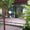 Фото Фруктовый сад