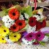 Фото Дом цветов