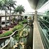 Aeropuerto Internacional José Joaquín de Olmedo, Photo added:  Friday, January 25, 2013 12:26 AM