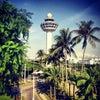 Lapangan Terbang Changi Singapura, Photo added:  Monday, July 22, 2013 11:50 AM