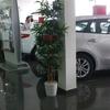 Фото Mitsubishi Motors