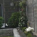 michelle-timmermans-11511928