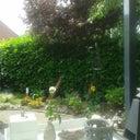 joletta-van-der-meer-16243729