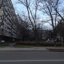 dejan-petkovic-24162661