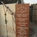 korovamilk-2576484