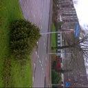 dick-hoogendijk-14653063