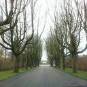 reinier-ende-van-der-414408