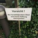 moritz-thau-4166610