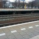 rik-hopmans-4651551