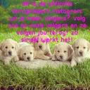 mehmet-ozkal-50068705