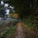 sven-witte-su2-5195109