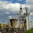 anna-kaporovich-54308642