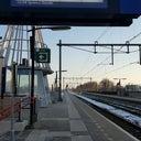 alice-de-jong-veenstra-6161322