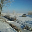 pieter-van-loenhout-12313773