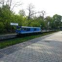 dennis-schilde-80258029