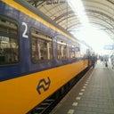 simonne-van-der-beek-14858067