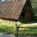 rogier-slaman-6915114