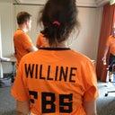 willine-8491337