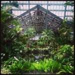 Photo taken at Garfield Park Conservatory by Alec B. on 7/20/2013