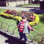 Photo taken at Palacio de Hierro by Edgar Ivan on 3/5/2013