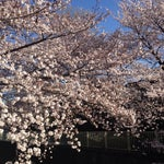 Photo taken at 塚山公園 by Yuichi O. on 3/30/2014