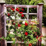 Photo taken at Kansas State University Gardens by Armistead B. on 5/25/2013