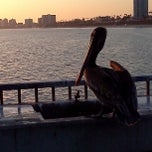 Photo taken at Belmont Veterans Memorial Pier by Louis F. on 4/1/2013