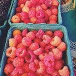 Photo taken at Sebastapol Farmers Market by Nimisha on 7/7/2013