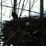 Photo taken at Bald Eagle Exhibit by Phil N. on 12/23/2012