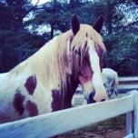 Photo taken at Shenandoah Crossing Equestrian Center by Elizabeth B. on 5/18/2013