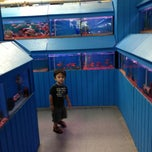 Photo taken at Fontana Pet Store by Abigail L. on 8/12/2013
