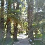 Photo taken at Huerto del Cura by Jesus H. on 2/3/2013