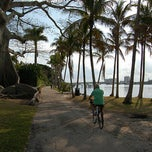 Photo taken at Palm Beach Bike Trail by ThePurplePassport.com on 2/3/2013