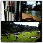 Photo taken at Golden Gate Park by Shannon F. on 7/5/2013