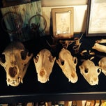 Photo taken at Graveface Records & Curiosities by Estevam R. on 1/7/2014