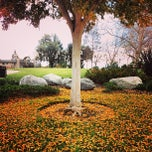 Photo taken at City of Laguna Hills by Rylan C. on 12/30/2012