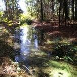 Photo taken at Kanapaha Veterans Memorial Park by Vicky K. on 11/18/2012