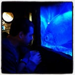 Photo taken at Bahooka Ribs & Grog by Michael B. on 3/6/2013