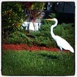 Photo taken at Estero, FL by Richard D. on 5/15/2014