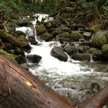 Photo taken at Wallace Falls Trail by Jonathon C. on 12/24/2012